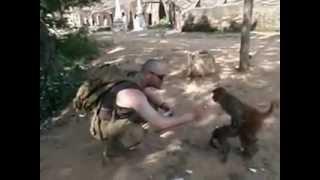 preview picture of video 'Affen bei den Höhlen von Po Win Daung Myanmar (Burma) Dezember 2011 2_3'