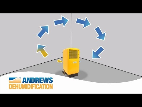How do dehumidifiers work?