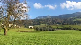 スイス発 リギ山麓町の散歩道【スイス情報.com】