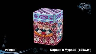 "Салют ""МУРЗИК И БАРСИК"" ТС720 (1"" х 16) от компании Интернет-магазин SalutMARI - видео"