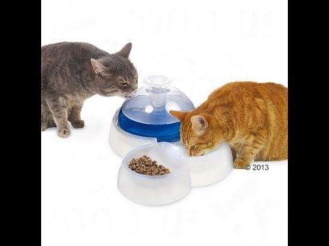 Catit Trinkbrunnen für Katzen und kleine Hunde | zooplus