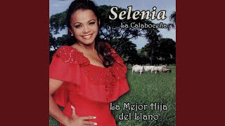 Amor Barato (Audio) - Selenia  (Video)
