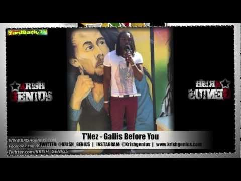 T'Nez - Gallis Before You [Team Brit Jam Riddim] Jan 2013