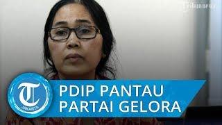 Partai Gelora Resmi Berdiri, PDIP: Masih Terlalu Dini untuk Mengomentari