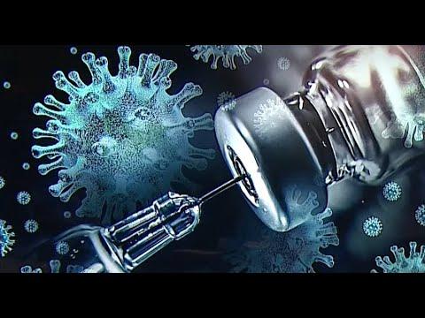 Tápanyaggázok a paraziták számára