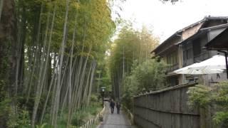 竹林の小径伊豆市修善寺