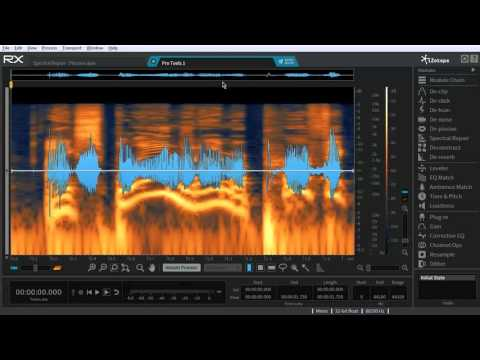 iZotope RX Post Production Suite 2 (Upgrade from RX Advanced)