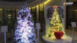 Festivalul Brazilor de Crăciun - Au fost strânşi 685.500 de euro; creaţia lui Omid Ghannadi - 180.000 de euro