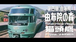 【遊記】九州大歩走〔第四回:湯布院〕由布院の森/Yufuin Floral Village|Go Go Go Travel - 日本 vlog