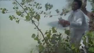 preview picture of video 'FISHING IN  pakistan TARBALA DAM by TARIQ'