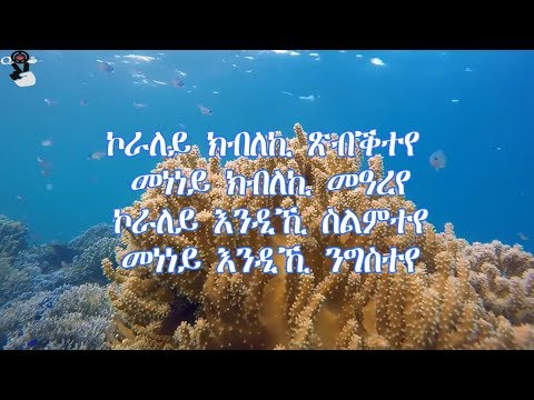 Kaleab Teweldemedhin - koraley (Lyric Video) - смотреть