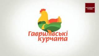 Семья Сигал и Гавриловские Курчата уклоняются от уплаты налогов