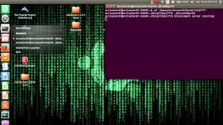 InstantDEX Beta rev 2 on Ubuntu