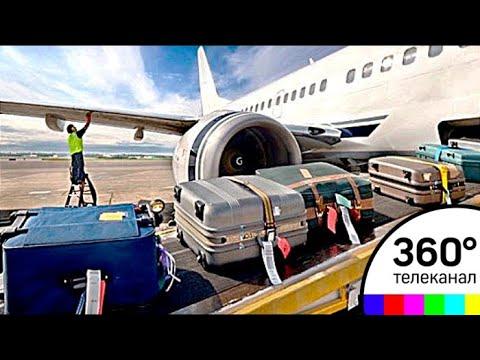 Новые правила провоза багажа и ручной клади в самолетах вступили в силу
