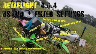 BETAFLIGHT 4.0.4 6s PID´s + FILTER SETTINGS [No RPM FILTER] || FPV FREESTYLE