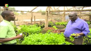 Smart Farm: Vertical Sack Farming