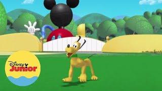 ¡A Pluto le encanta jugar a las escondidas! ¿Pero se habrá ido de viaje en el avión de Mickey o está escondido en algún lado? ¿Podrías ayudarme a encontrarlo? Mira ¿Dónde Está Pluto? en Disney Junior  Sitio Oficial: http://www.disneylatino.com/disneyjunior/  Síguenos en Facebook: http://www.facebook.com/DisneyJuniorLatinoamerica  ¡Haz click en el botón SUSCRIBIR y entérate de los nuevos videos de Disney Junior en Youtube!