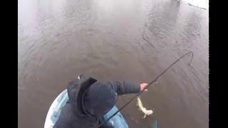 Рыбалка на реке омь омская область