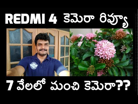 redmi 4 camera review best in budget?? ll in Telugu ll by prasad ll