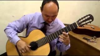 Чапаевич Семиструнная гитара Дмитрий Трофимов
