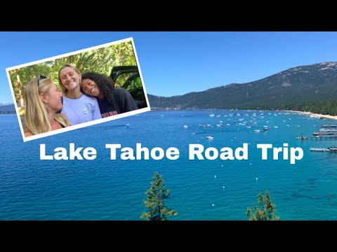 Road Trip to Lake Tahoe (Part 1): Traveling + House Tour + Hiking , Puppies Swimming + Making Dinner