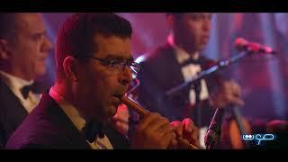 Sawt Live | Adlane Fergani - يا غصن نّقا