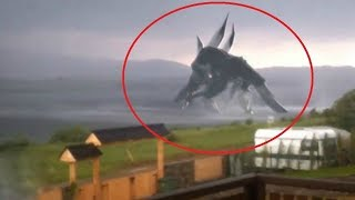 5 Giant Creatures Caught on Camera