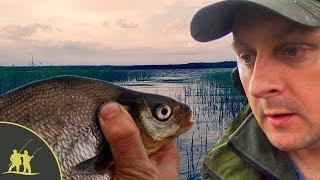 Рыболов поймал 53 рыбки 18 окуньков