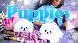 DIY - How to Make: Cute No Sew Doll Puppies - One Take - Handmade - Craft - 4K
