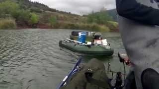 Pêche A La Carpe Record Au Salagou