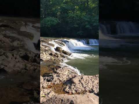 "Waterfall up the mountain ""Whitaker Falls"""