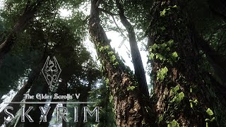 Skyrim - The Great Forest of Whiterun Hold Mod