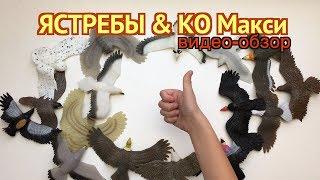 Ястребы и Ко Макси (от ДеАгостини 2017), распаковка, видео-презентация