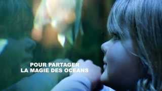 preview picture of video 'Aquarium de Vannes'