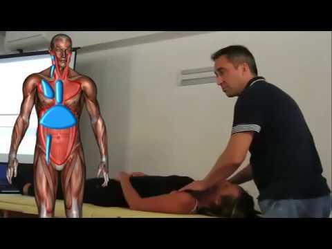Dolori alle articolazioni e tenuta interna