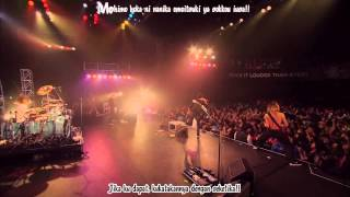 Kanzen Kankaku Dreamer   ONE OK ROCK Red Bull Live Indonesian Subtitle & Kara Effects