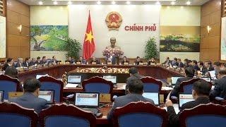 Tin Tức 24h Mới Nhất: Giết mổ gia cầm tràn lan ở Quảng Ngãi