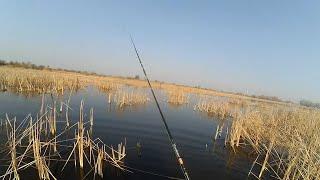 Ловля щуки на волынцевском водохранилище енакиево
