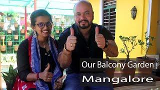 Our Balcony Garden   Kadri Kambla Road, Kadri, Mangalore