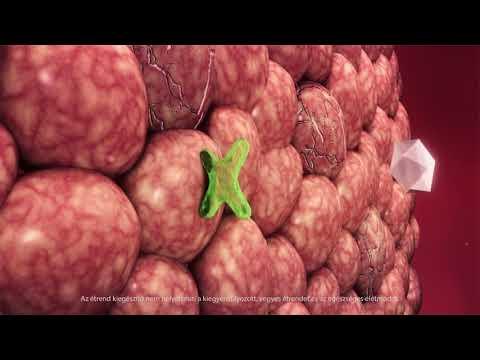 Saláta répa cukorbetegeknek