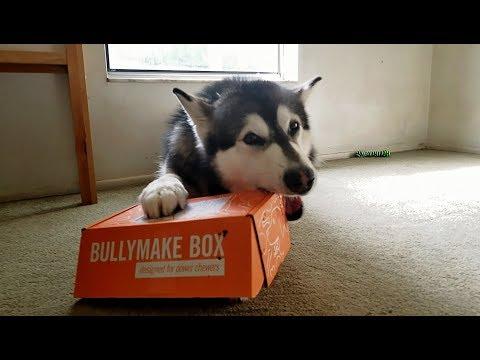 Tonka Unboxes June BullyMake Box