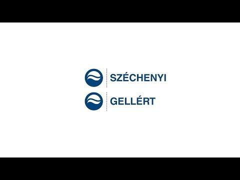 Széchenyi & Gellért Baths (Hungary)