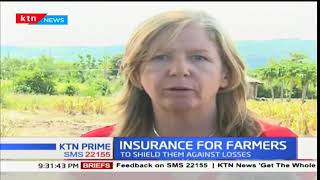 Sorghum farmers insured against agricultural risks in Kisumu County