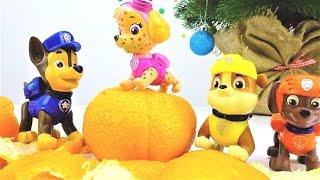 Видео с игрушками. Герои мультфильмов про Щенячий патруль! Скай объелась мандаринов!