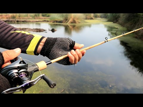 Fishing With Bamboo Casting Rod
