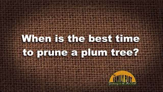 Q&A – When is the best time to prune a plum tree?
