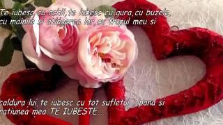 Neylini feat Muneer - Te iubesc