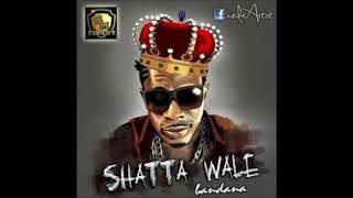 Shatta Wale Ft Sean Paul, Nicki Minaj Gringo Rmx
