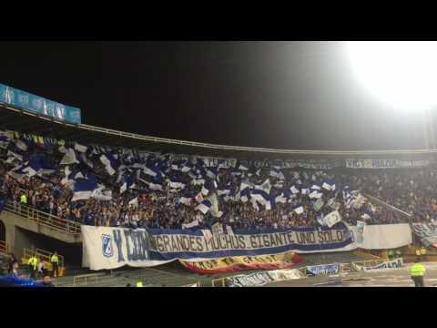 """La orquesta de la Blue Rain"" Barra: Blue Rain • Club: Millonarios"