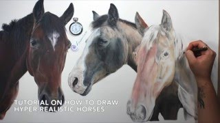TUTORIAL #13: How to draw realistic horses and the importance of layering.